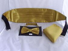 Brillante poliéster Oro Pajarita Cummerbund Y Pañuelo conjunto de más de 60 Colores Disponibles