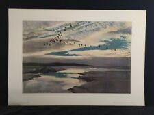 More details for brent geese flighting by peter scott, print