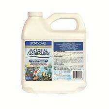 API PondCare Microbial Algae Clean 64 oz #269D