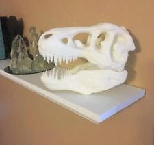 Tyrannosaurus Rex Bone (T-Rex) Skull Replica