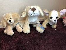 Webkinz Lot With Codes Tawny Pup Lil Kinz Golden Retriever Chihuahua