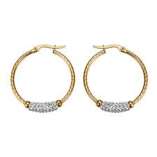 Women's Stainless Steel Fashion Gold Plated Rhinestone Hoop Earrings Ear Jewelry