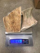 1 Pound Cheap Chews Moose Antler Dog Chew Mix-M/L  SALE LOT Bulk Elk Large Deer