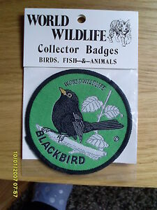 World Wildlife Collectors Cloth Bird Badge of a Blackbird