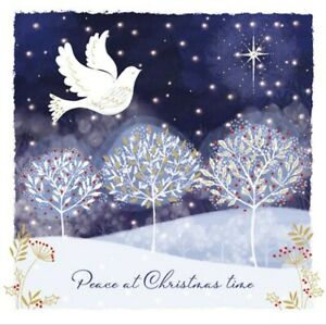 Charity Christmas Cards ~ 10 Pack with Envelopes ~ Dove in the Dark Sky