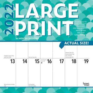 LARGE PRINT - 2022 WALL CALENDAR  - BRAND NEW - 438982