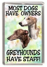 "Greyhound Fridge Magnet ""Most Dogs Have Owners Greyhounds Have Staff!"""
