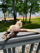 Driftwood from Tennessee River For Terrarium/Aquarium Reptile Crafts Decor
