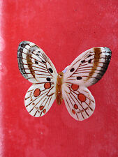 beautiful Porcelain Figurine_Butterfly_Ens _