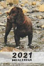 Boykin Spaniel Calendar 2021: Perfect for Notes and Planning, . by White, Megi