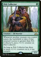 Magic the Gathering (mtg): Guilds of Ravnica: Pelt Collector - Rare