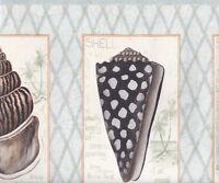 Shells Squared on Blue Diamond Wallpaper Border RG3926B