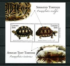 Liberia 2011 MNH Reptiles of Africa 1v S/S II Turtles Tortoises Stamps