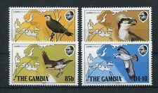 Gambia 479/82 postfrisch / Vögel .........................................1/3848
