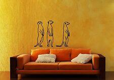 Wall Stickers Vinyl Decal Meerkats Funny Animals Nursery For Kids ig1468