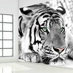 3D Black White Tiger Animal Wall Mural Wallpaper Living Room Bedroom Lounge