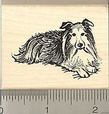 Sheltie Dog Rubber Stamp H8401 Shetland Sheepdog Wm
