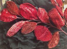 Vintage Millinery Leaves Blood Red Velvet Japan 1940