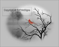 Cardinal Photo Art Photography Red Gray Black Home Decor Picture Color Splash