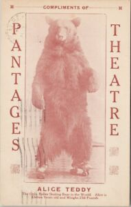Pantages Theatre 'Alice Teddy' Roller Skating Bear c1920 Postcard G70