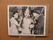 The Wizard of Oz 8x10 photo movie stills print #3012