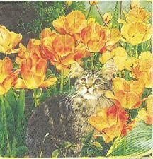 2 Serviettes en papier Cocktail Chat fleur Paper Napkins Cat in flowers Cypress