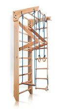 Ladder Swedish Sport Gym Wall bars Kid playground Baby Play Home Climbing Toys