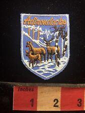 Vtg ADIRONDACKS New York Wildlife Patch - Adirondack Mountains 76YC