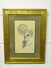 Antique Botanical Print, Hand Coloured Engraving, Sidney Watts, London, 1820's