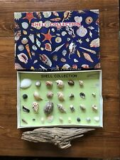 Vintage Seashell Collection Boxed & Authentic Driftwood