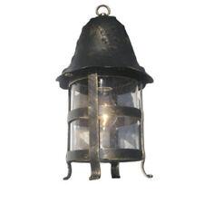 TP Lighting Exterior Hanging Lighting Outdoor Ceiling Light Fixture TPLA0010-24