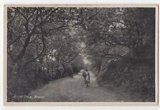 Ercall Drive Wrekin Shropshire Vintage Postcard