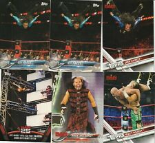 Matt and Jeff Hardy WWE Topps card lot