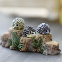 FAIRY GARDEN Accessories Miniature Dollhouse DIY Hedgehog Resin Craft Decor New