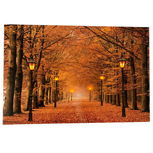6 LED Light Up HD Autumn Avenue Scene Wall Home Decor Canvas Picture Gift Art