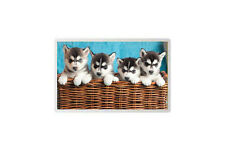 SIBERIAN HUSKY PUPPY DOG JUMBO FRIDGE MAGNET - PET LOVER BREED PHOTO FAN GIFT