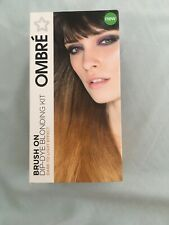 🌸Bnip Superdrug-Ombre, Brush On Dip-dye Blonding Kit🌸