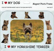I Love(Heart) My Dog Magnetic Photo Frame & Magnet - Yorkshire Terrier