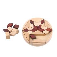 Wooden IQ Game Jigsaw Intelligent Tangram Brain Teaser Puzzle Baby Kid Toys S