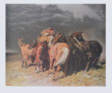 Alfred Roloff Kunstdruck Poster Bild Lichtdruck Pferde im Gewitter 72x85 cm
