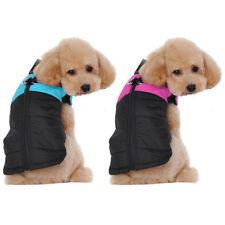 Vestiti e scarpe nere senza marca per cani