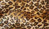 "Velboa Faux Fur Fabric Animal Print JAGUAR 60"" Wide sold By the Yard"