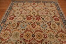 Art and crafts Persian Traditional 9X12 Beige area Rug wool area rugs carpet EDH