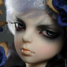 1/4 BJD DOLL Dollpire Kid Boy - Blue Thorn : Pado - LE 30 ( Full Set)
