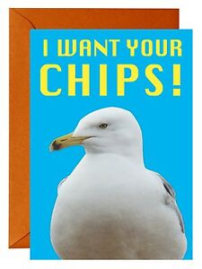 SEASIDE BEACH SEAGULL ''I WANT YOUR CHIPS''  GREETINGS CARD (BIRTHDAY) BIRD
