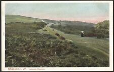 Isle of Wight. Shanklin. Luccomb Common - Vintage Printed Postcard