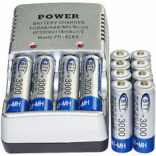 12x AA 2A 3000mAh 1.2 V Ni-MH BTY Rechargeable Battery Cell+ AA Battery Charger