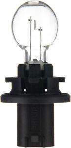 Turn Signal Light  Philips  12185C1