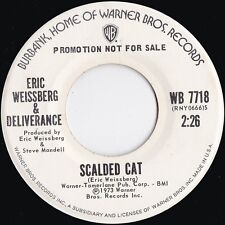Eric Weissberg & Deliverence ORIG US Promo 45 Scalded cat NM '73 Blue grass