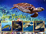 Montserrat 2016 MNH Sea Turtles 4v M/S Green Ridley Sea Turtle Reptiles Stamps